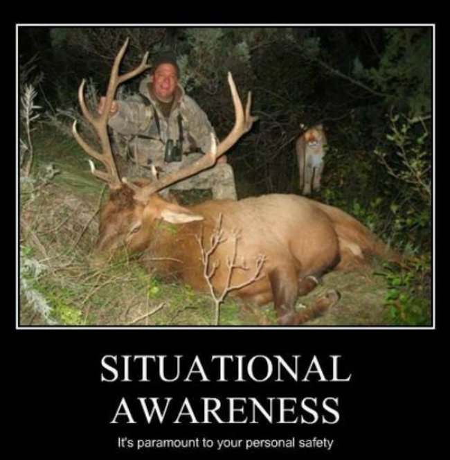 deer hunting memes - photo #9