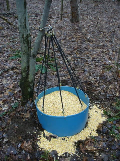 antler trap ideas