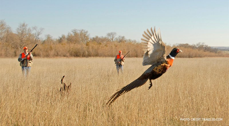 hunter numbers decline